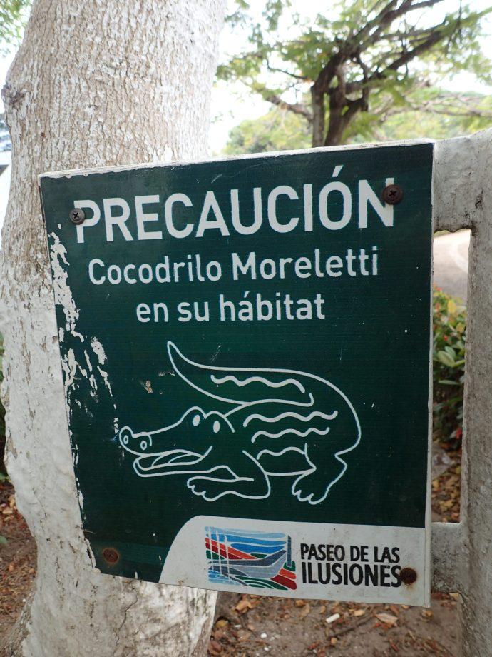 Urban crocodiles
