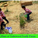 Easter Egg Hunt on the Farm
