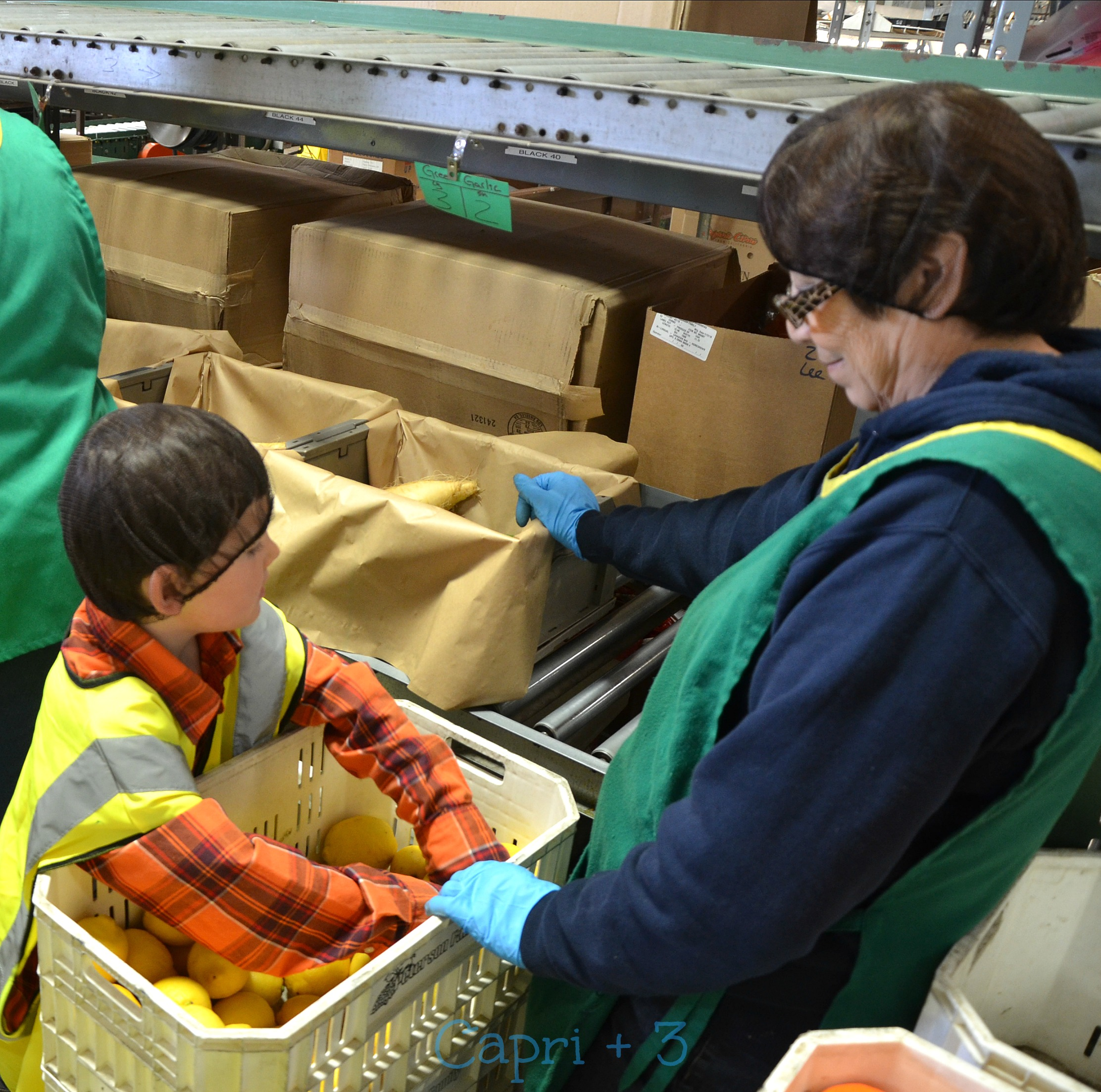 Travel to your local farm and have the children take a tour. Abundant Harvest Organics provides tours where children can participate in packing the boxes of organic fruit.