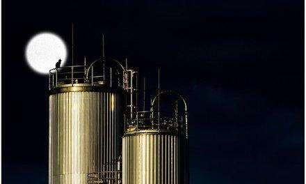 Gazprom Dividende auf Allzeithoch – Der Gaskonzern auf den Vormarsch
