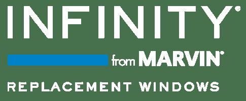 Infinity Logo windows