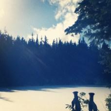 Too Much Bear Lake