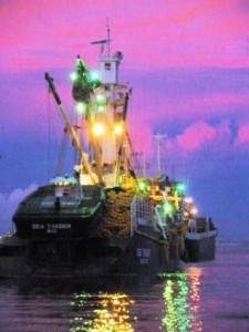 tuna boat at twilight