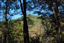 Strawn Mtn. from half-way up the opposite mountain