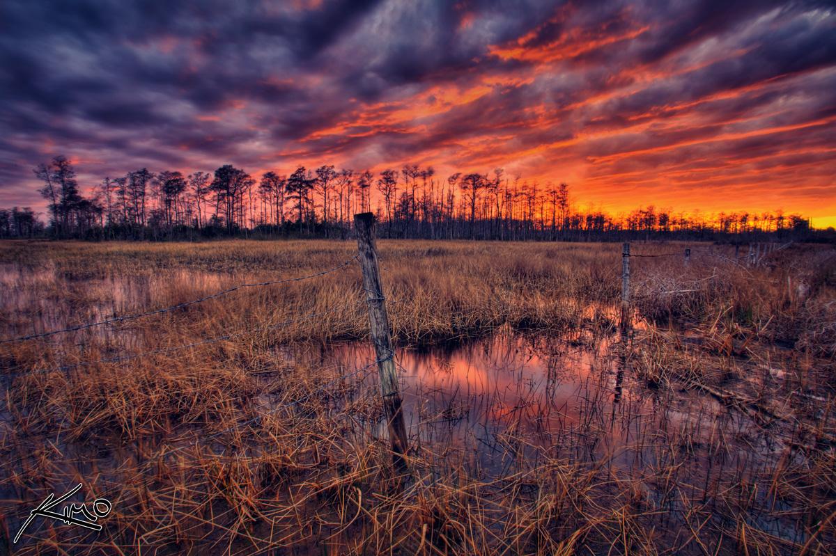 Loxahatchee Slough Wetlands At Sunset