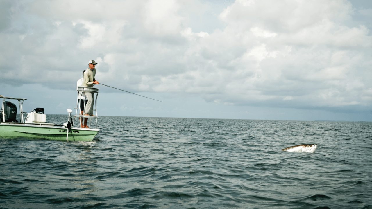 https://i1.wp.com/captainsforcleanwater.org/wp-content/uploads/2021/06/Simon-Perkins-Tarpon-Fishing-e1624382344671.png?resize=1280%2C720&ssl=1