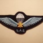 "Canadian SAS Association Commemorative parachute badge (""wings"")."