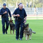 Police dog handlers with their dogs. (D7100a 007)