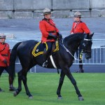 The Officer Commanding the Musical Ride entering the stadium grounds. on his black horse. (D7100a 232)