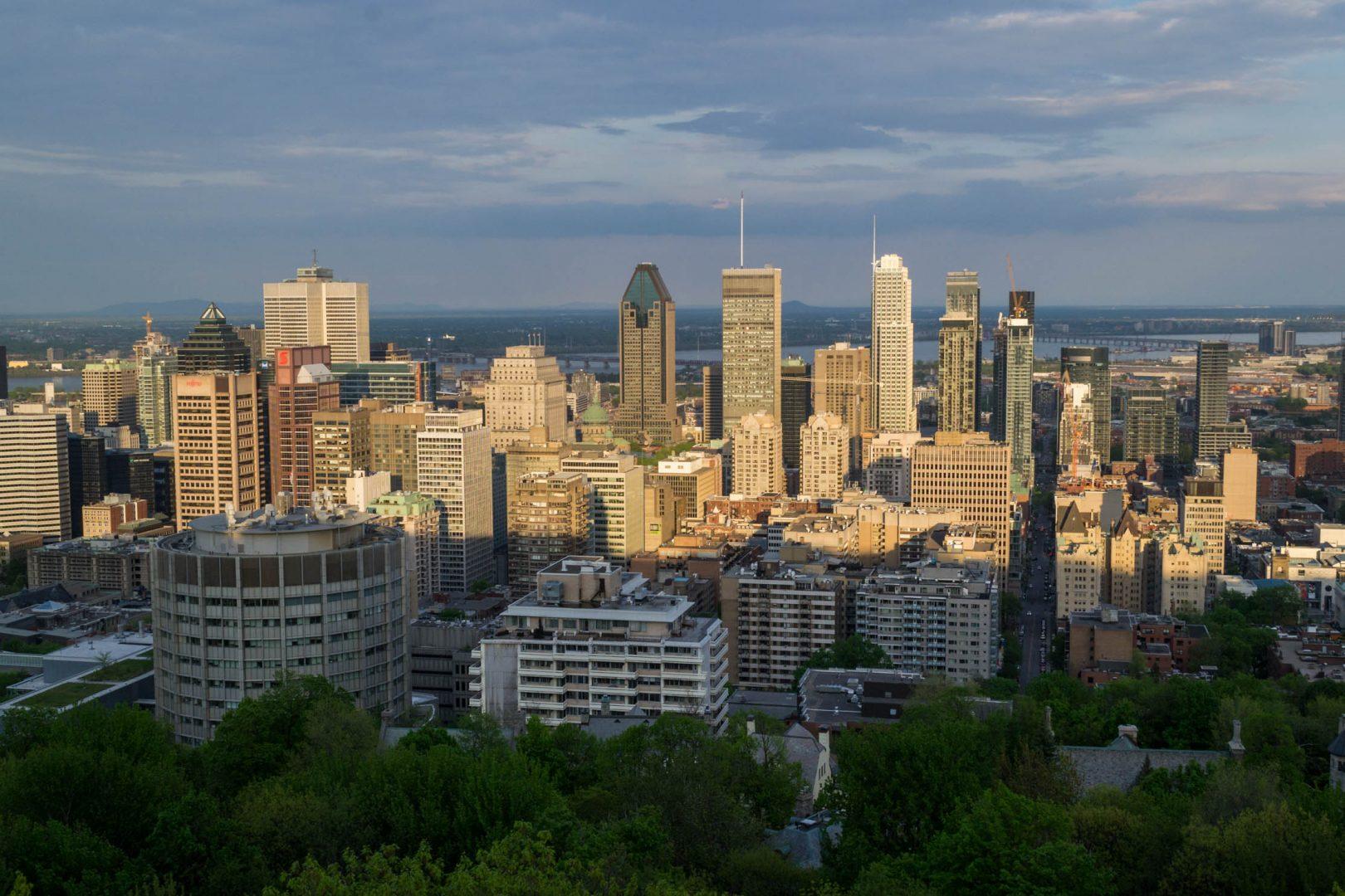 La vue sur le Downtown depuis Mont Royal