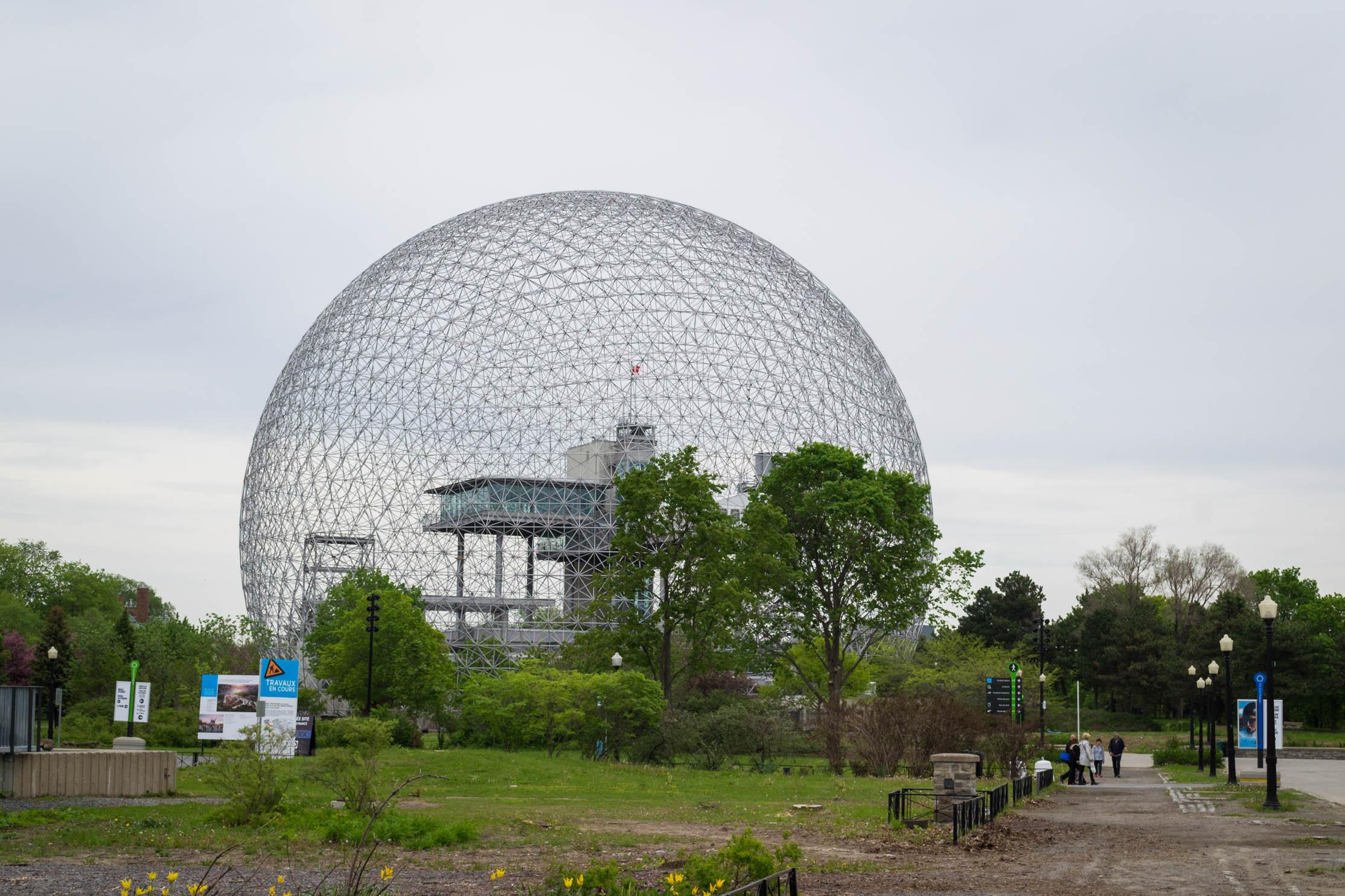 La biosphère sur l'île Sainte Hélène