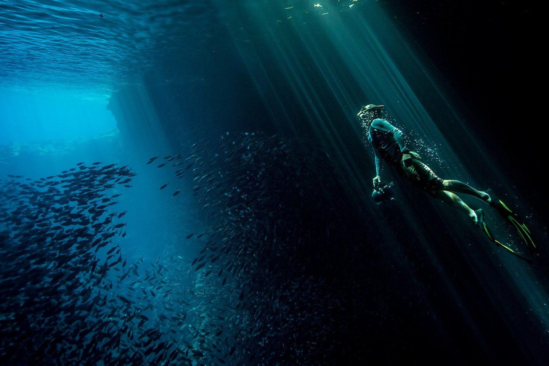 Une des affiches de la série - Crédit photo : www.nationalgeographic.com.au