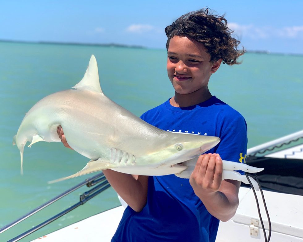 Blacknose Shark, Sanibel Island Fishing, Catch & Release, Captiva Island, Friday, April 12, 2019.