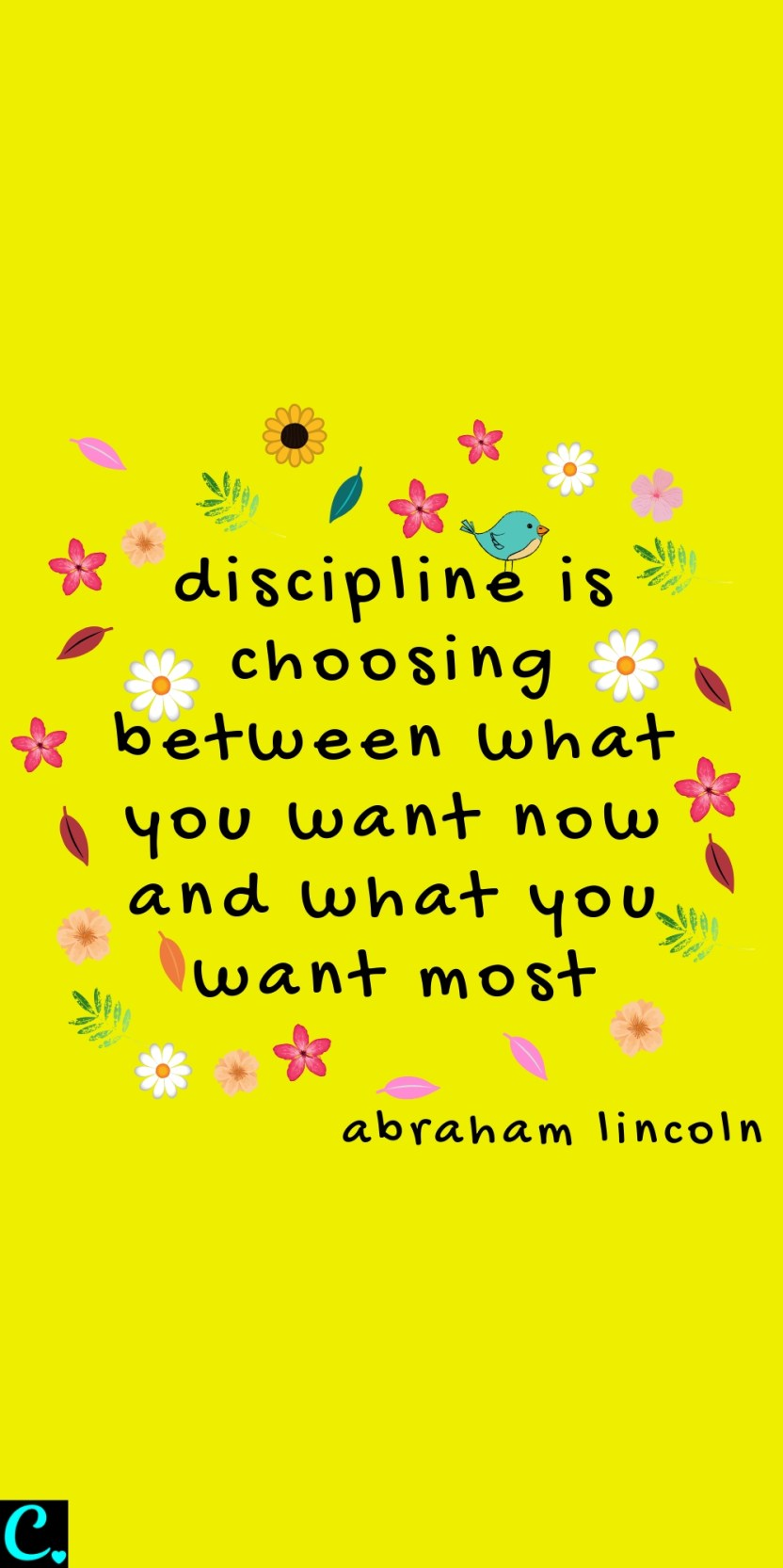 discipline is choosing between what you want now and what you want most - Abraham Lincoln Quote about discipline #productivityquotes #productivity #successquotes #success