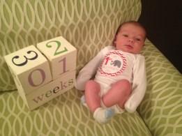 1 week old_RBD (1)