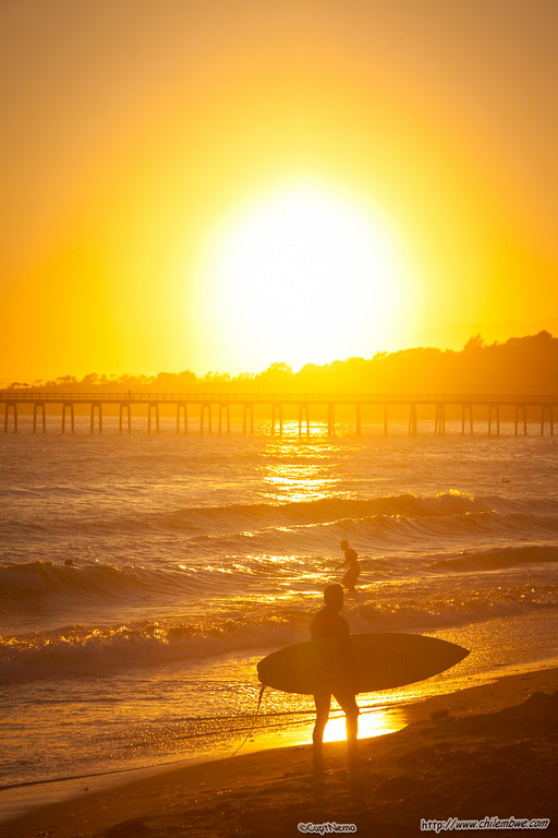 Surfer at the Beach sunset