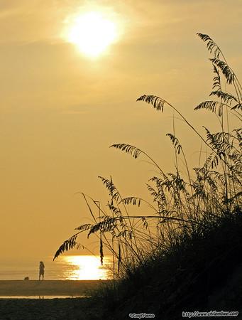 Jacksonville Sunrise