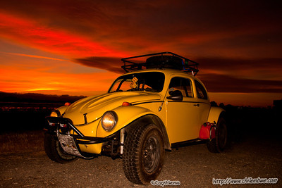Sunset baja bug