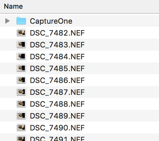 Capture One subfolder