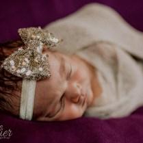 Lucia Newborn-2377