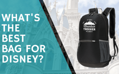 What's The Best Bag For Disney World in 2017?