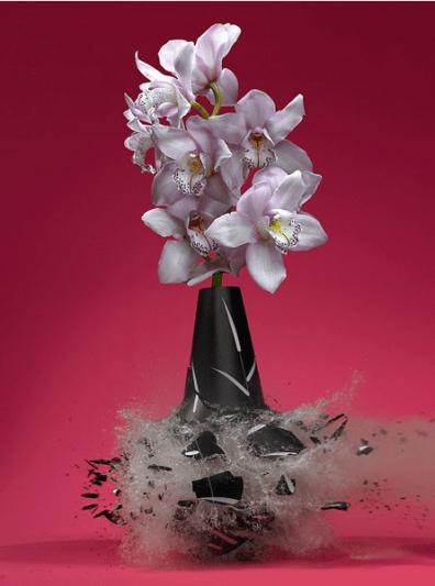 martin_klimas_pink
