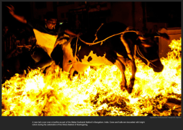 nytl_india_firejumpin