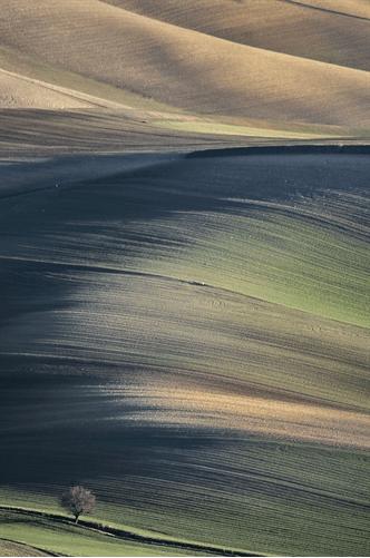 surreal_landscape