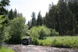 roarke_yurt_driveway