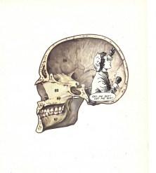 skull_trap