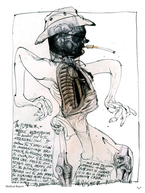 ralph_steadman_hunter_anatomy