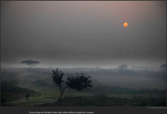 nytl_new_dehli_sunrise