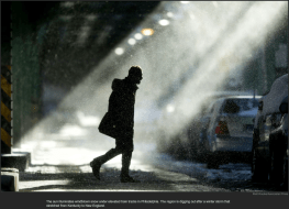 nytl_polar_ray.com