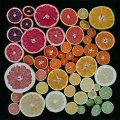 tones_of_citrus