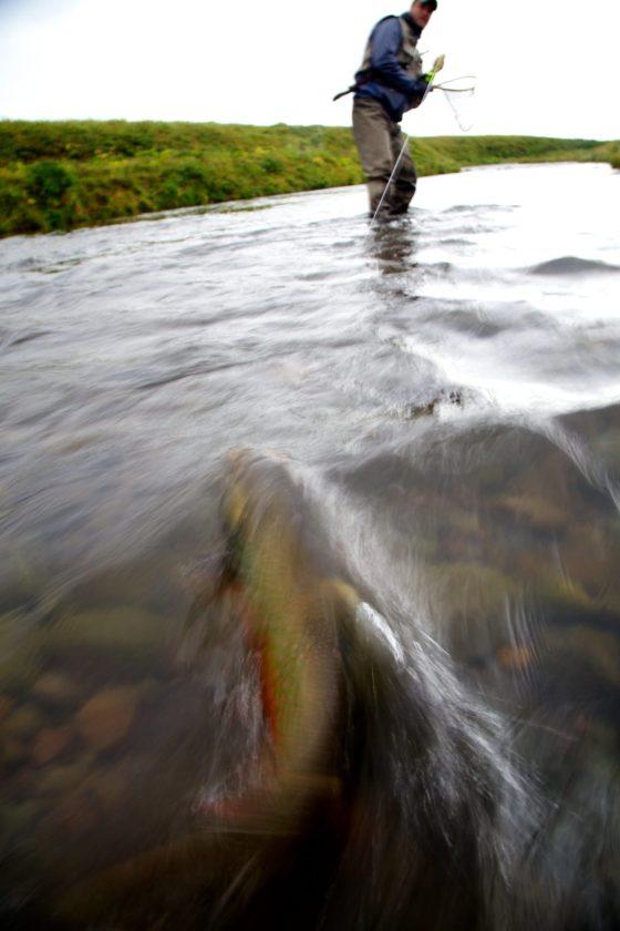 Cold Bay Alaska Fishing Trip