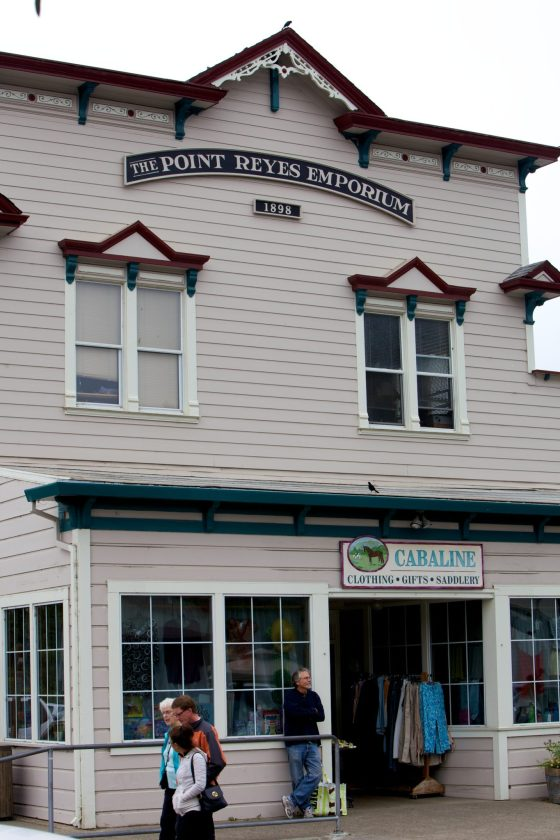 PointReyesOld (2)