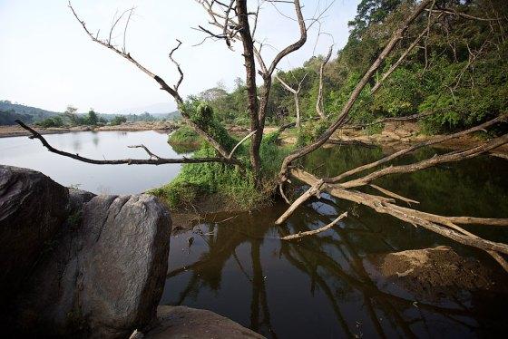 Bhoothathankettu 12