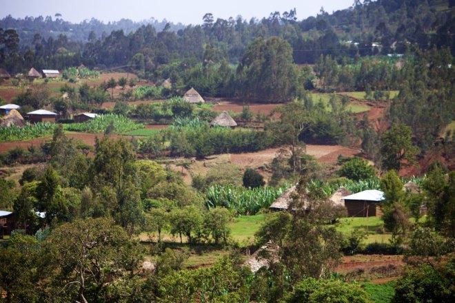 Ethiopia 5