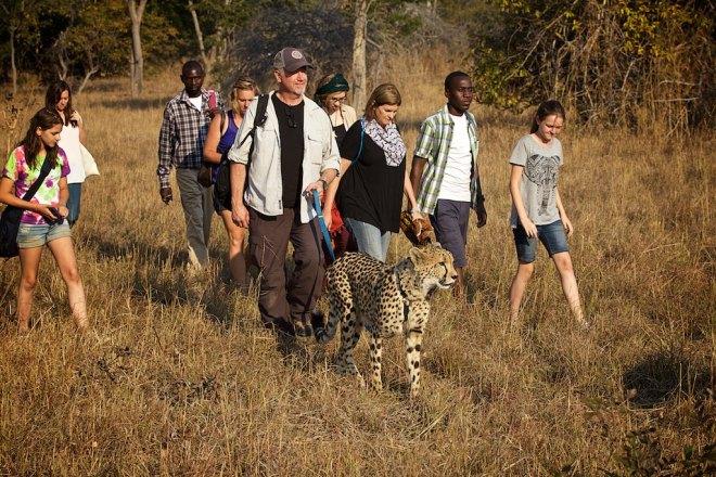 Zambia 16
