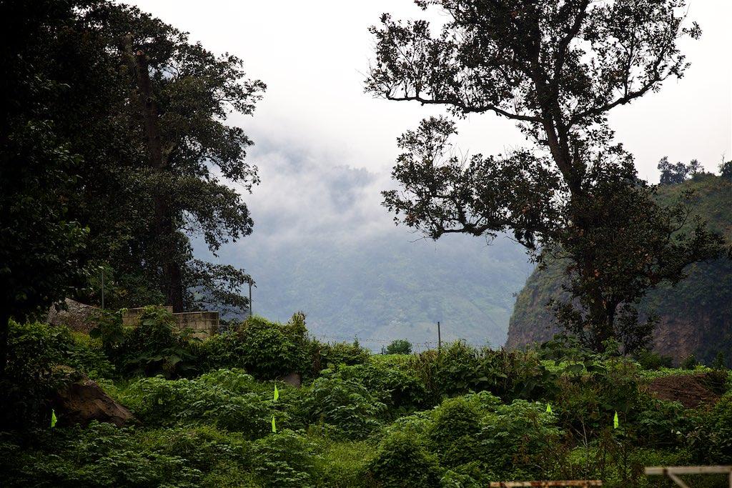 Guate 8