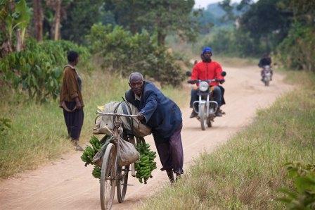 The Uganda countryside 17
