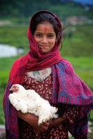 Faces of the Nepalese 18