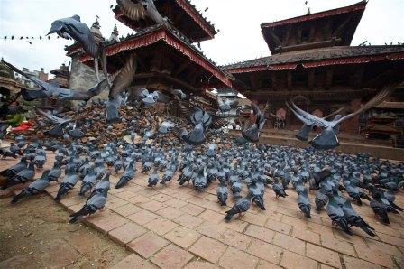 Kathmandu 21