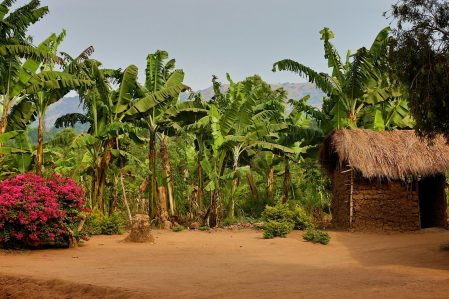 The Rakai region of Uganda