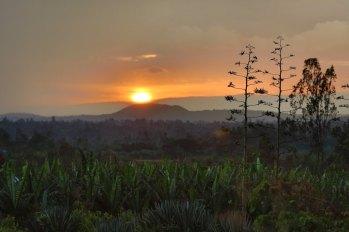 Ethiopian Countryside