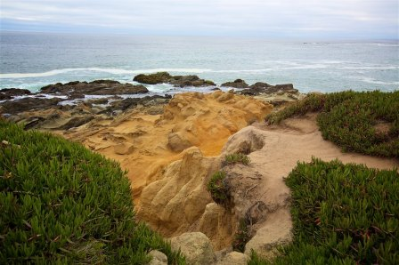 Pigeon point 36