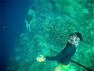 Day 04 diving story 9