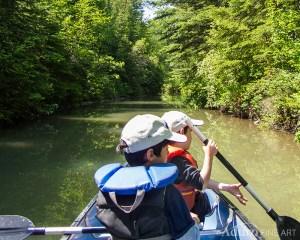 Two Boys in a Canoe