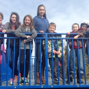 homeschool high school, grade 8 & 9: the churning