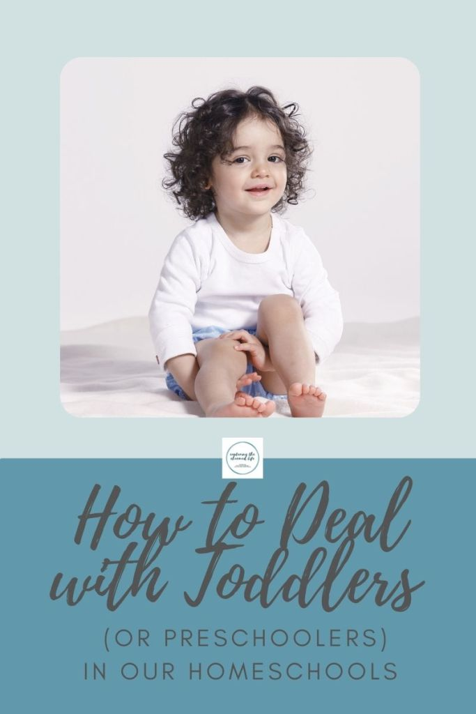 How to Deal with Toddlers or Preschoolers in our Homeschools